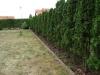 wrocław trawnik z rolki 1