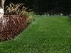 wrocław trawnik z rolki 4