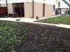trawnik z rolki medlow1