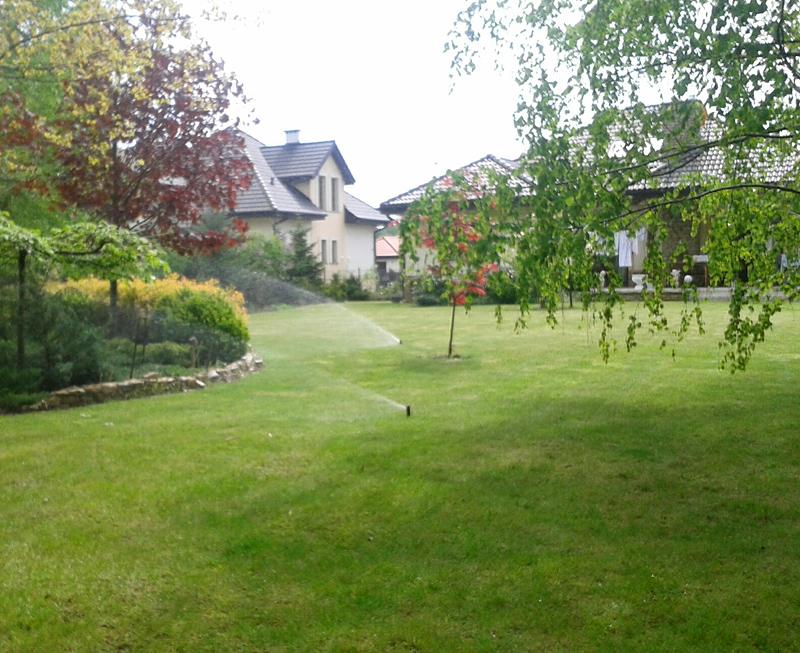 nwwodnienie i wertykulacja trawnika