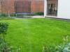 zakładanie trawnika trawa siana Wrocław