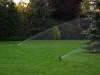 automatyczne-nawadnianie-trawnika