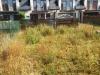 zakładanie ogrodu trawnik z rolki