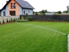 trawnik siany wroc 2