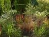 nawadnianie-trawy-w-ogrodzie