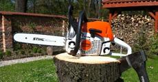 wycinka-drzew-wrocaw
