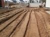 przygotowanie gleby pod trawnik