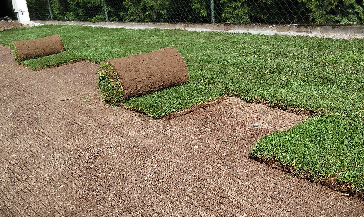 rozkładanie trawy z rolki