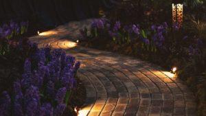 ogród atrakcyjny po zmroku