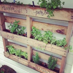 DIY w ogrodzie